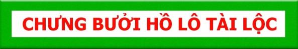 BUOI-HO-LO-TAI-LOC-CHUNG-QUA-TET-2014-DOC-DAO
