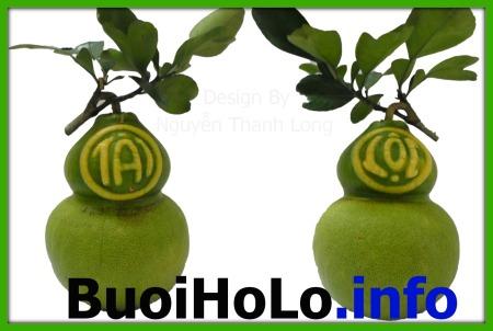 Buoi-Ho-Lo-Tai-Loc-qua-tang-tet-doc-dao-2014