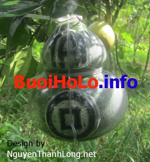 Buoi-Ho-Lo-Tai-Loc-Thoi-Vang-Dong-Tien-2014